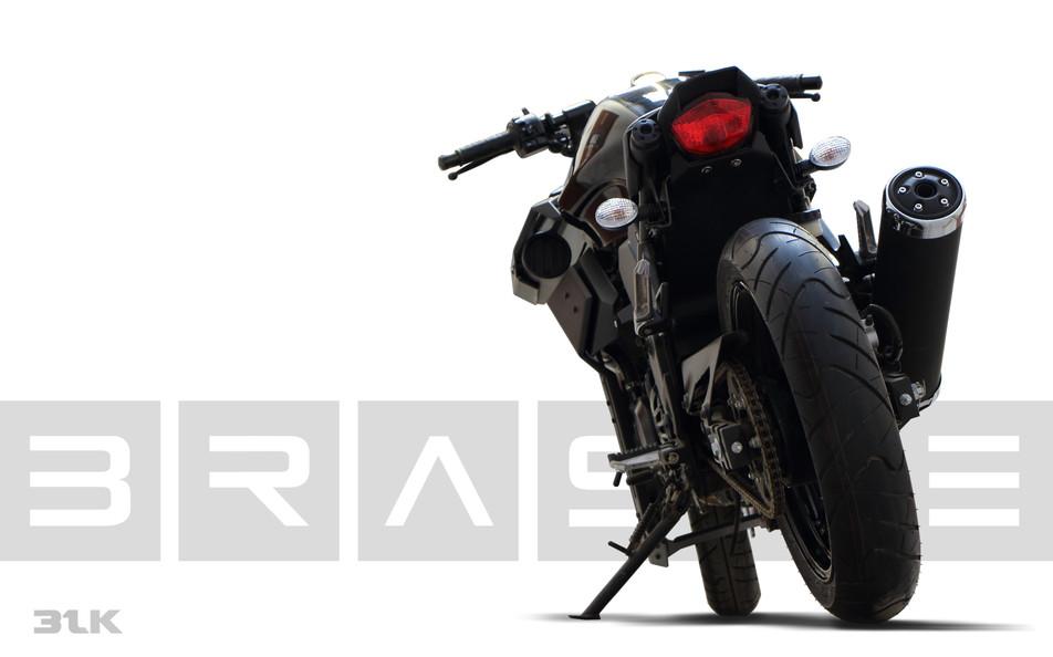 BRASSE-31BLK-Mod-Kit-for-Kawasaki-Ninja - 2