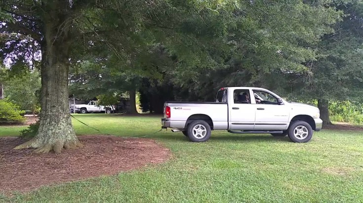 Wow This Truck Pulled Down The Tree Without Ease! Watch!